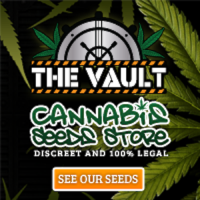 200x200_Vault_Cannabis_Seeds_Stores_Small_Square