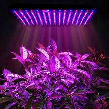 Grow Light Panel Full Spectrum